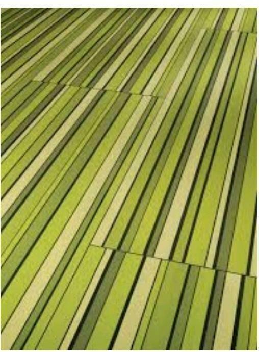 náhled Laminátová plovoucí podlaha PARADOR 44 m2